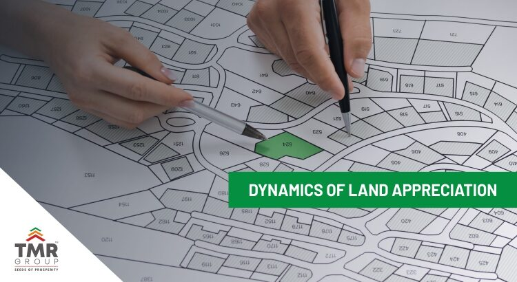 Dynamics of land appreciation